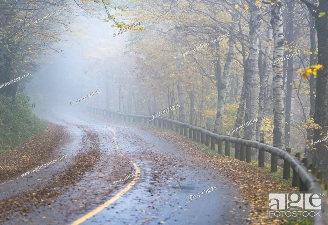 Stock Photo: Rural road, in autumn mist Massachusetts, USA.