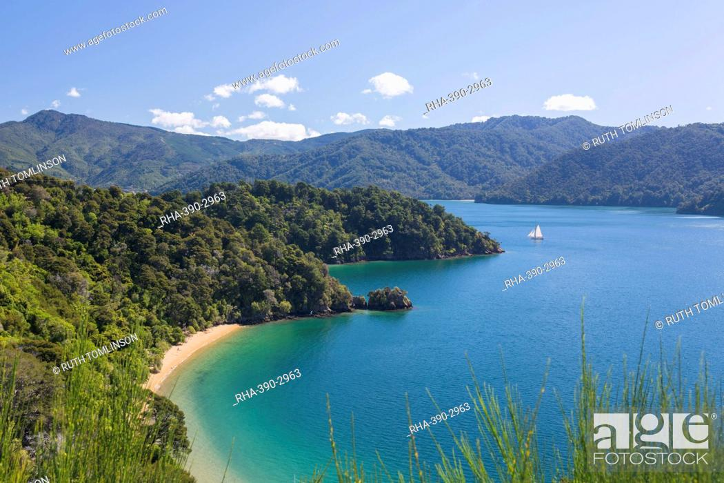 Stock Photo: View over Governors Bay and Grove Arm, Queen Charlotte Sound (Marlborough Sounds), near Picton, Marlborough, South Island, New Zealand, Pacific.