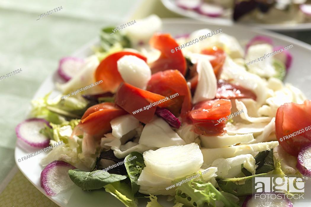 Photo de stock: Salad plate with variety of vegetables. Horizontal shot.