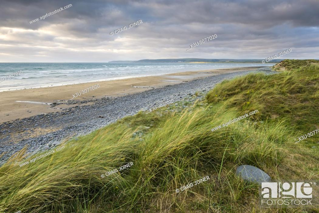 Stock Photo: The sand dunes and beach at Norham Burrows Country Park, North Devon, England.