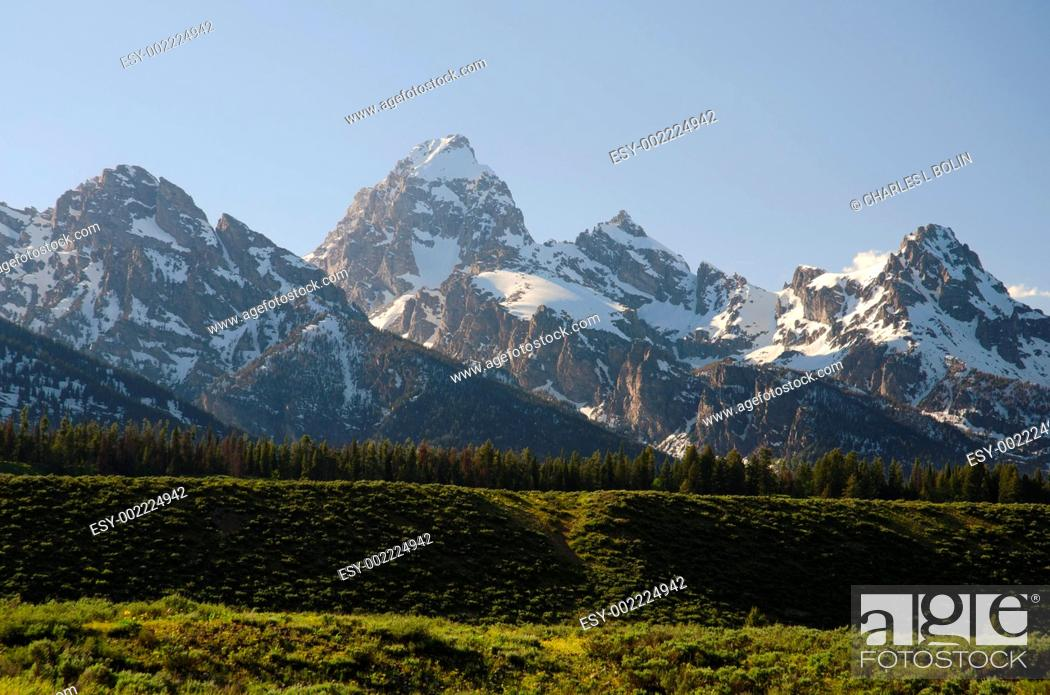 Stock Photo: The Grand Teton Range, seen from Moose-Wilson Road, Grand Teton National Park, Teton County, Wyoming, USA.