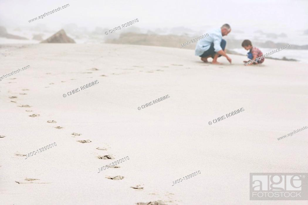 Stock Photo: Father and son 5-6 playing on beach.