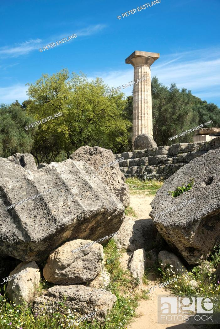 Stock Photo: A re erected doric column towers over similar fallen capitals and column drums at the Temple of Zeus at ancient Olympia, Peloponnese, Greece.