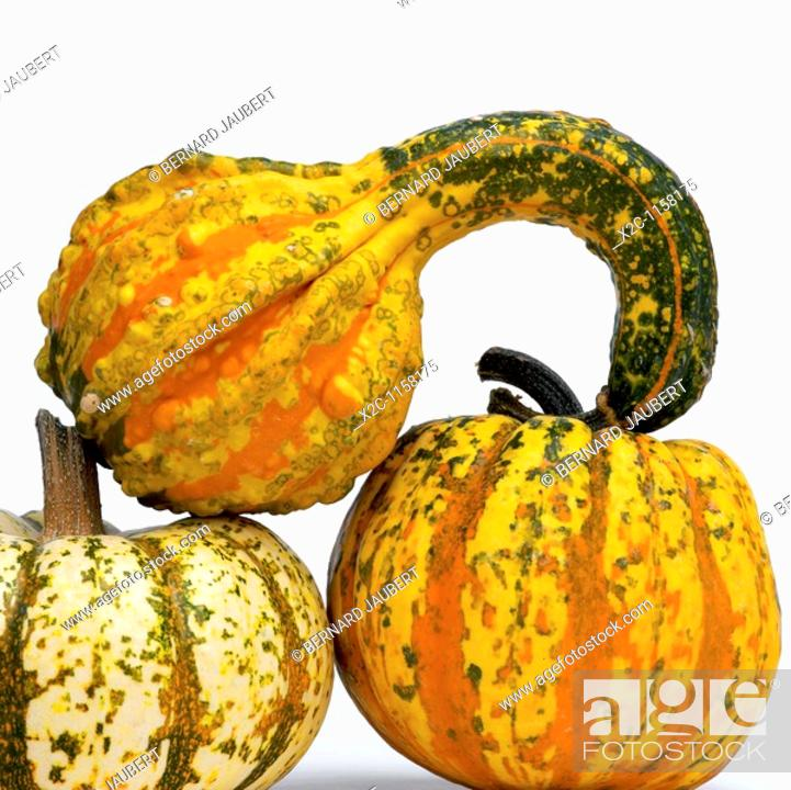 Stock Photo: Still life of gourds in studio.