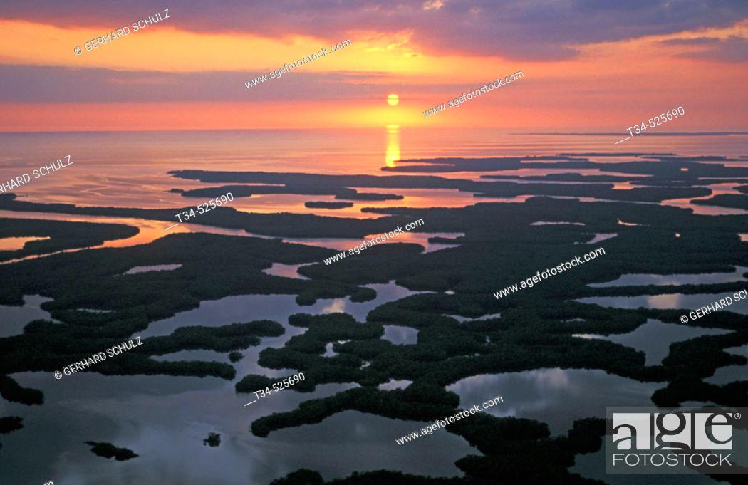 Stock Photo: Ten-Thousand Islands. Mangroves. Everglades N. P. Florida, USA.