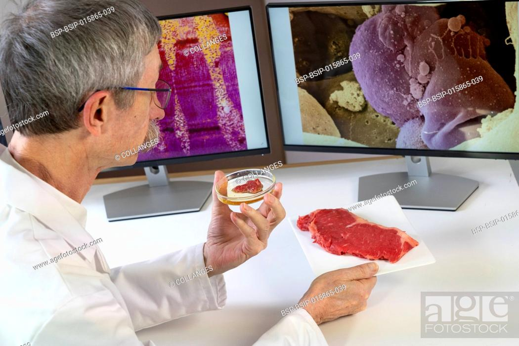 Imagen: Researcher presenting meat created from stem cells in front of computer screens with medical images of muscle and stem cell.