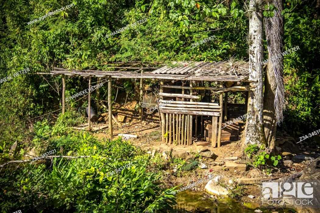 Stock Photo: Old shed on a farm in Topes de Collantes, Trinidad, Republic of Cuba, Caribbean, Central America.