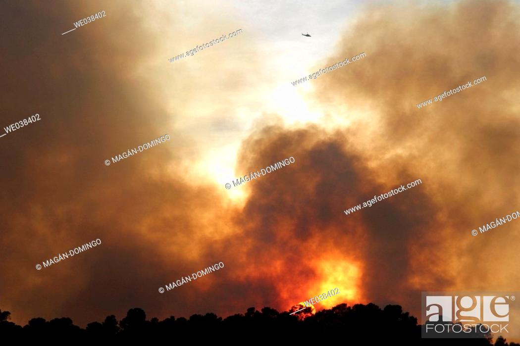 Stock Photo: Forest fire.
