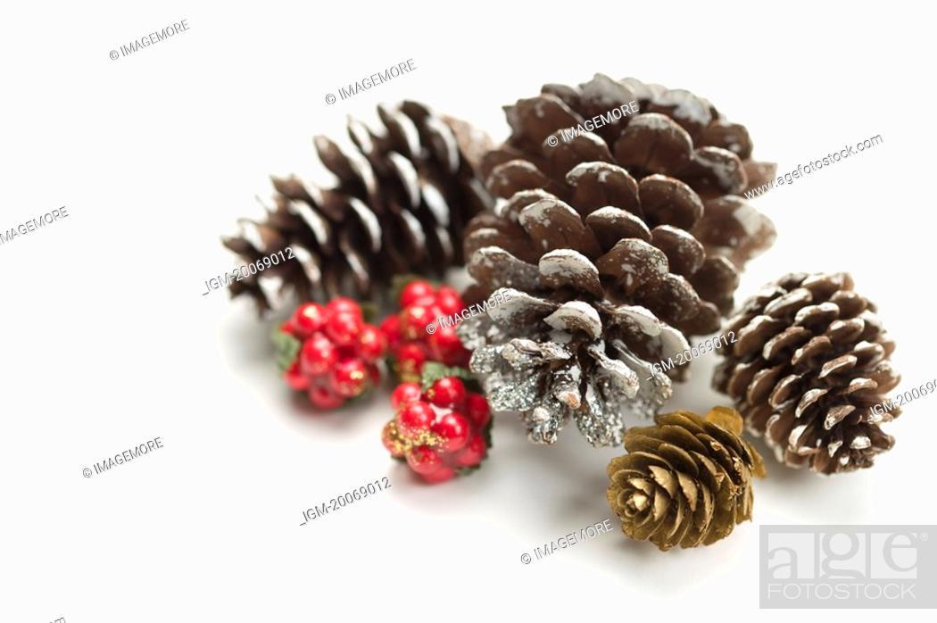 Imagen: Different sizes of pine cones.