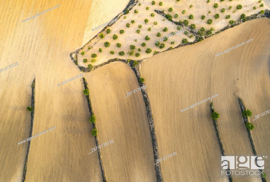 Imagen: Drone view of farmlands. Almansa, Albacete province, Spain.