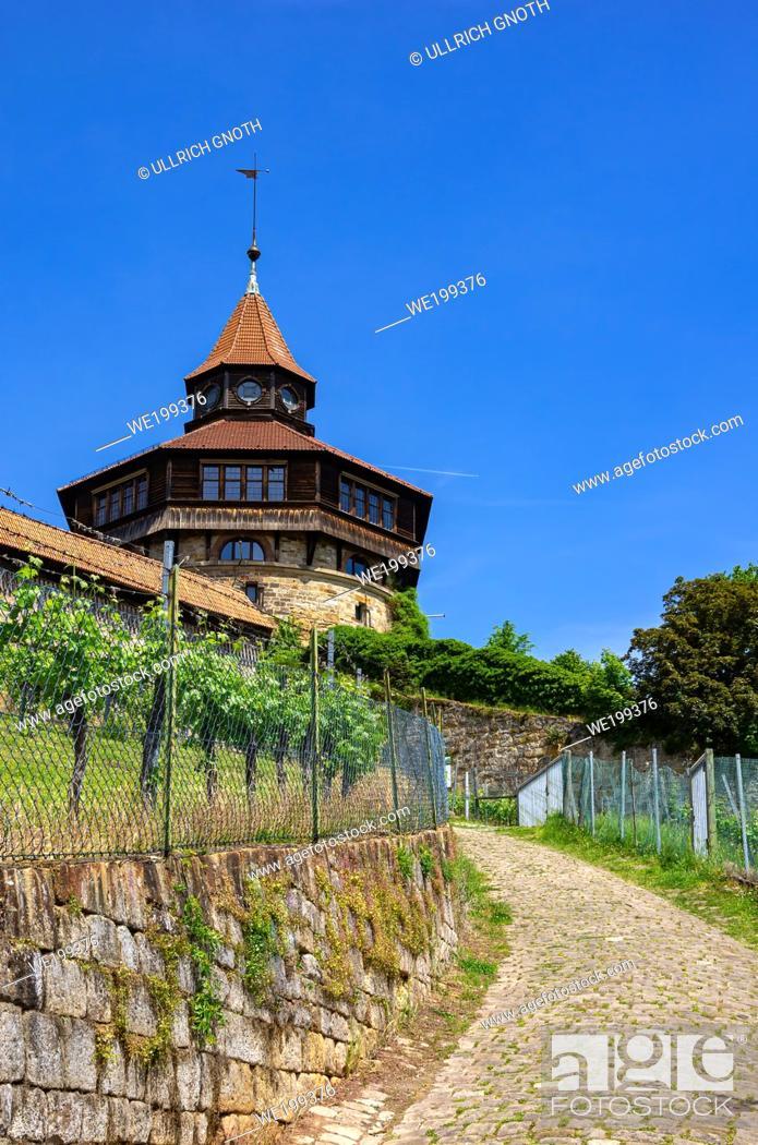 Imagen: Part of Esslingen Castle and vineyard, Baden-Wurttemberg, Germany.