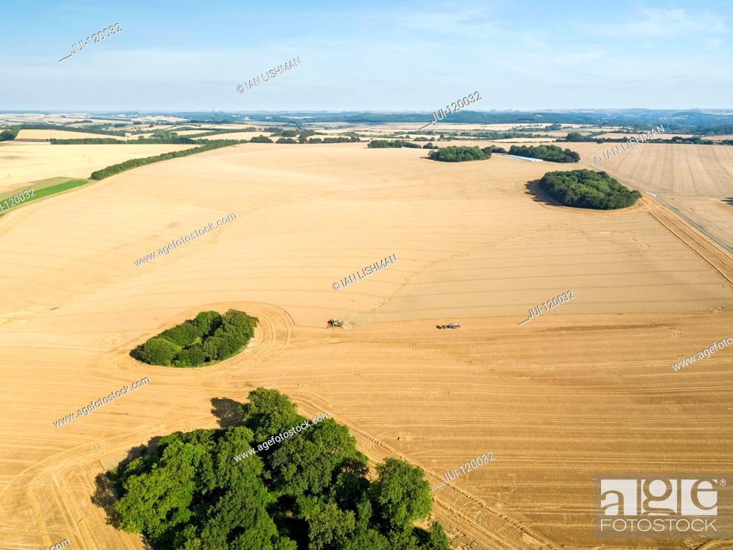Stock Photo: Harvest aerial landscape of combine harvester cutting summer wheat field crop with tractor trailer under blue sky on farm.