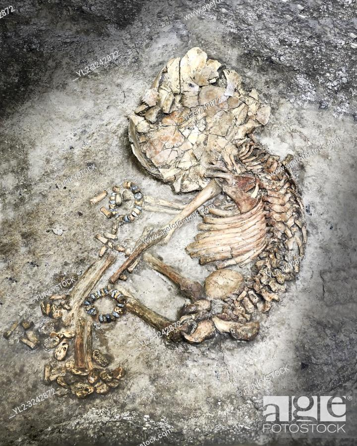 Stock Photo: Infant burial. the infant was buried in a foetal position and has stone wrist bands. The brown area on the left side of the skeleton is the remains of the.