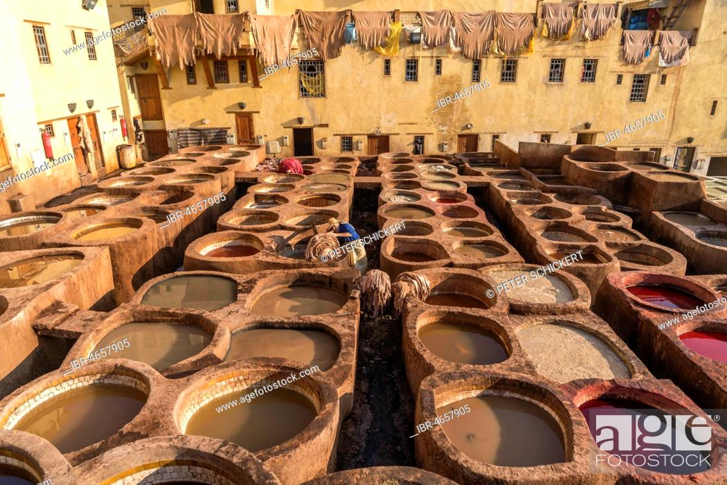 Stock Photo: Leather dyeing tanks, dyeing plant, Tannerie Chouara tannery, Fes el Bali tannery and dyeing district, Fez, Morocco.