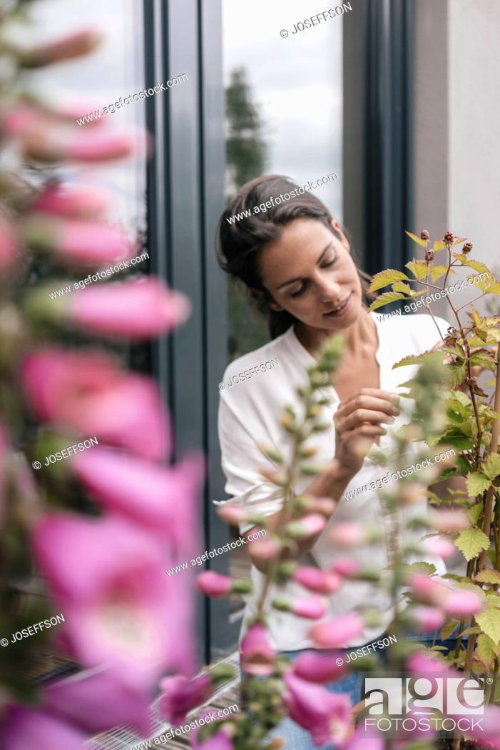 Stock Photo: Woman caring for plant on balcony.