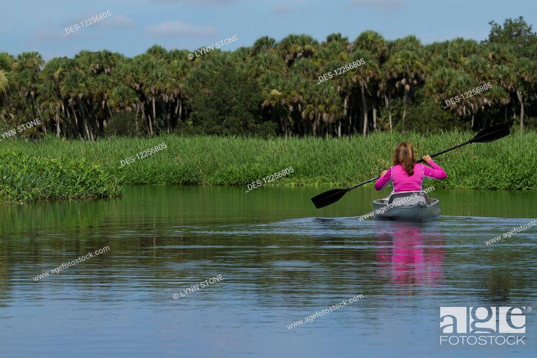 Imagen: Woman kayaking in Upper Myakka River Lake, Myakka River State Park; Sarasota, Florida, United States of America.