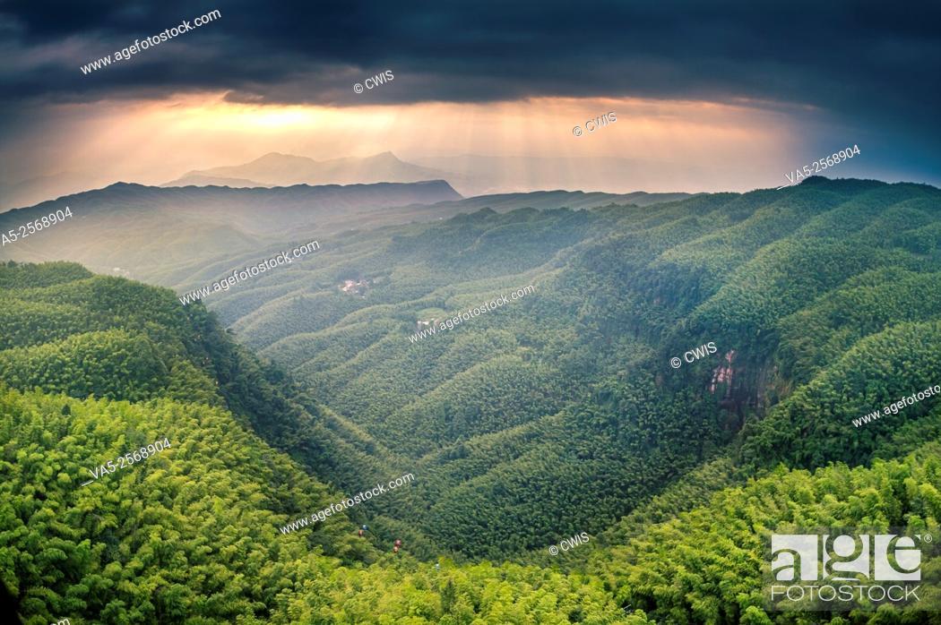 Photo de stock: Yibin, Sichuan province, China - Beautiful view at Shunan Bamboo Sea national park.