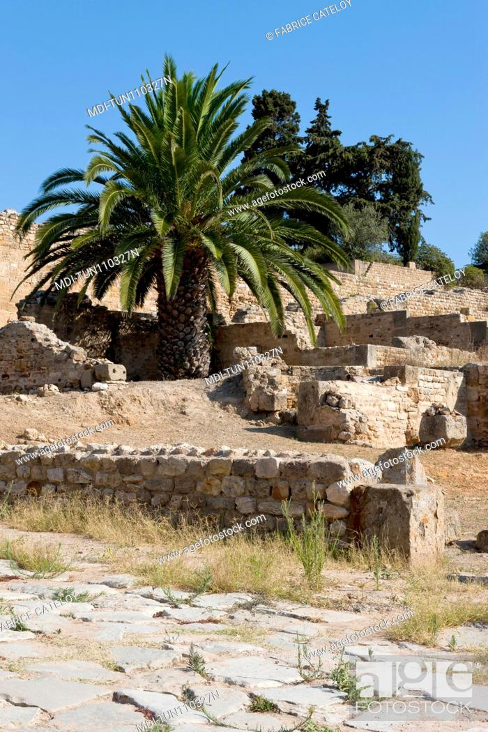 Imagen: Tunisia - Carthage - The Roman houses.