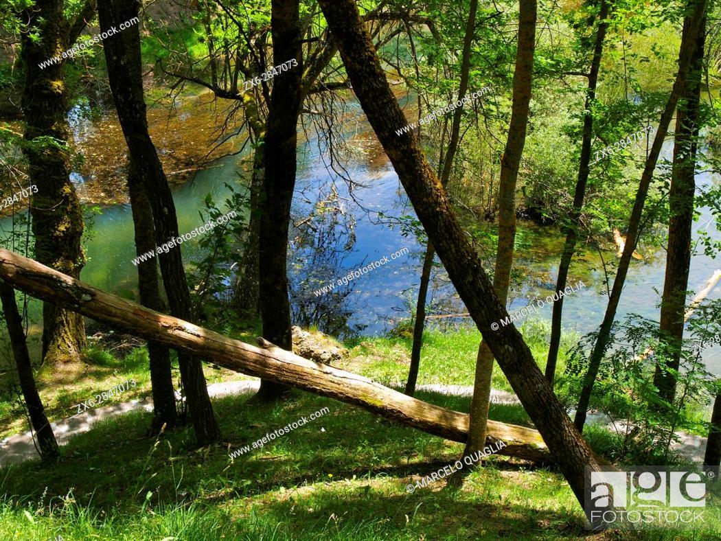 Stock Photo: Source of Ebro River at Fontibre village surroundings. Hermandad de Campoo de Suso region, Cantabria autonomous community. Spain.
