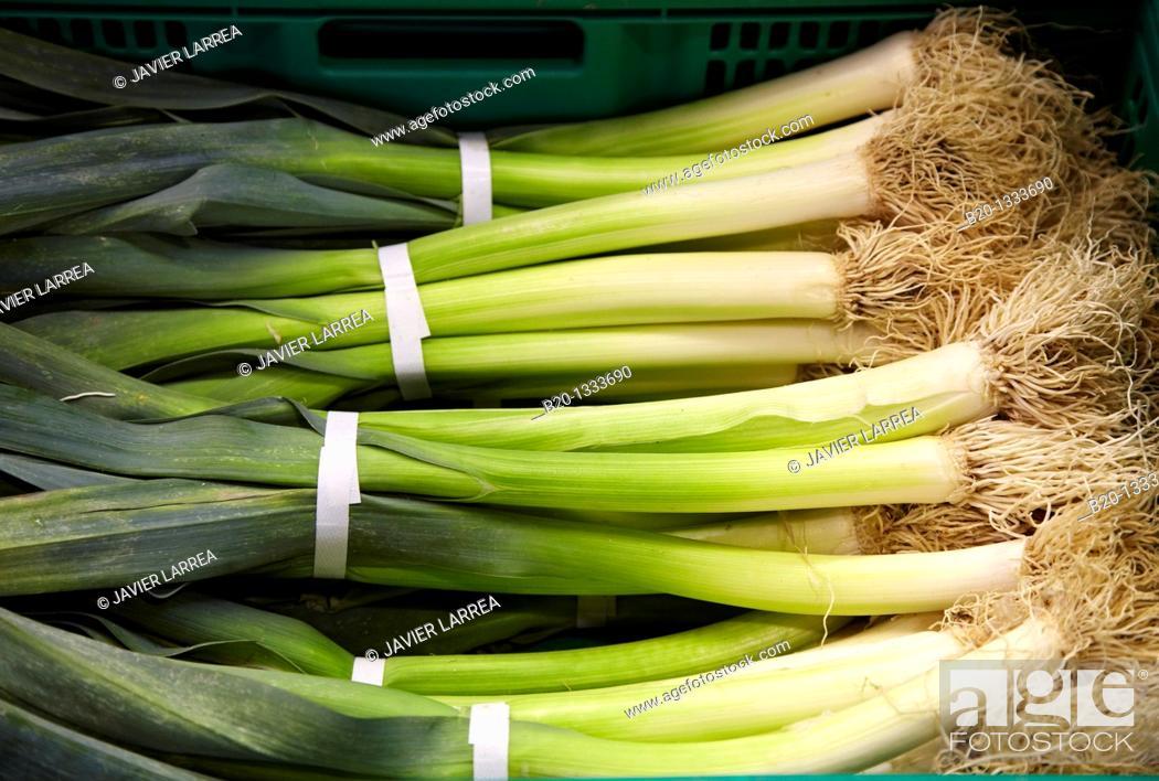 Stock Photo: Leeks, Mercabilbao fruits and vegetables wholesale market, Basauri, Bilbao, Bizkaia, Euskadi, Spain.