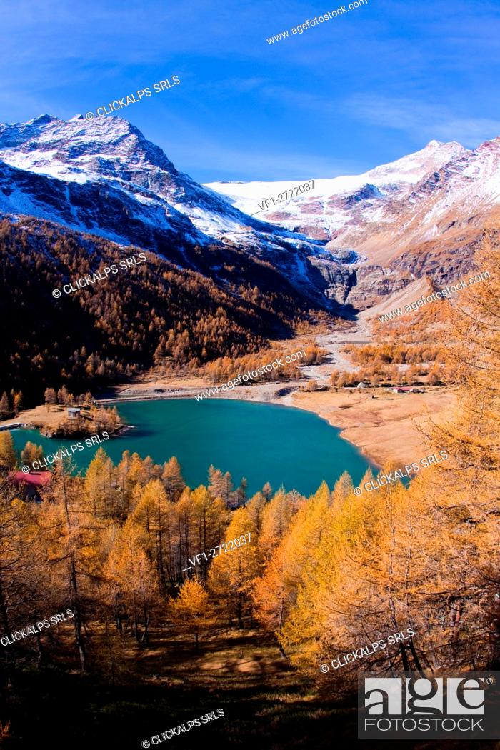 Stock Photo: The lake of Alp Grum surrounded by autumn colors, in the background glacier Palù. Poschiavo Valley Canton of Graubünden Switzerland Europe.