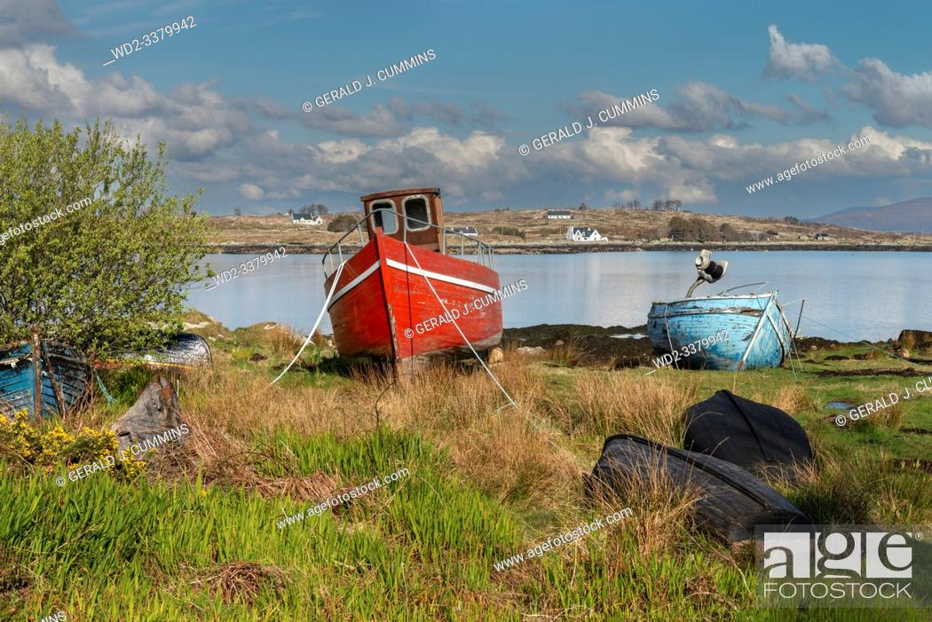 Stock Photo: Ireland, Galway, 2016/04 , A red and blue derelict wooden fishing boats decaying on the shoreline of the Irish coast. .