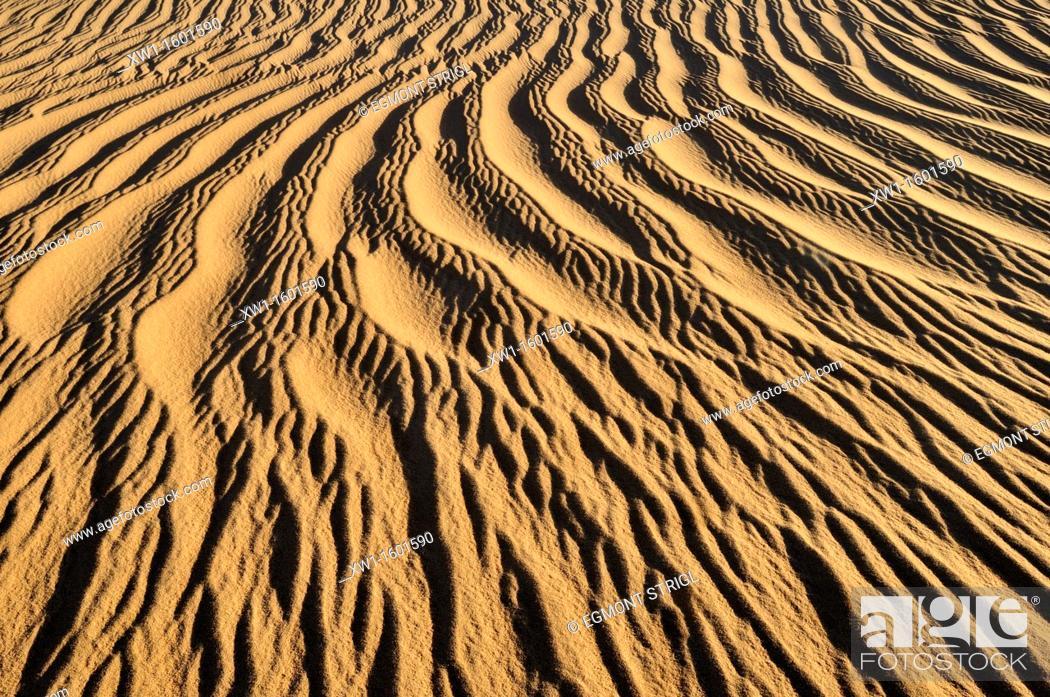 Photo de stock: sand ripples, texture on a sand dunes nearTehenadou, Adrar n' Ahnet, Algeria, Sahara, North Africa.