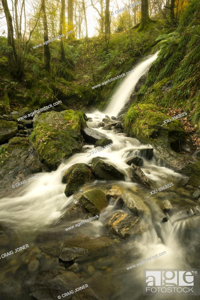 Stock Photo: Holme Force in Holme Wood above Loweswater in the Lake District National Park, Cumbria, England.