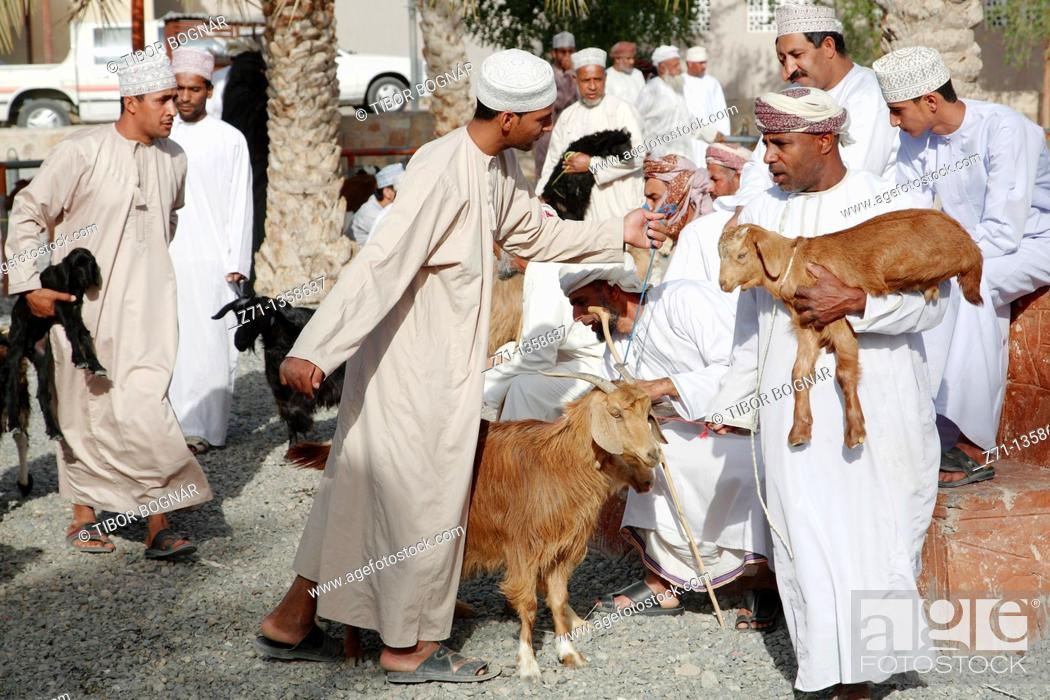 Stock Photo: Oman, Al-Dakhiliyah, Nizwa, livestock souq, goats, people.