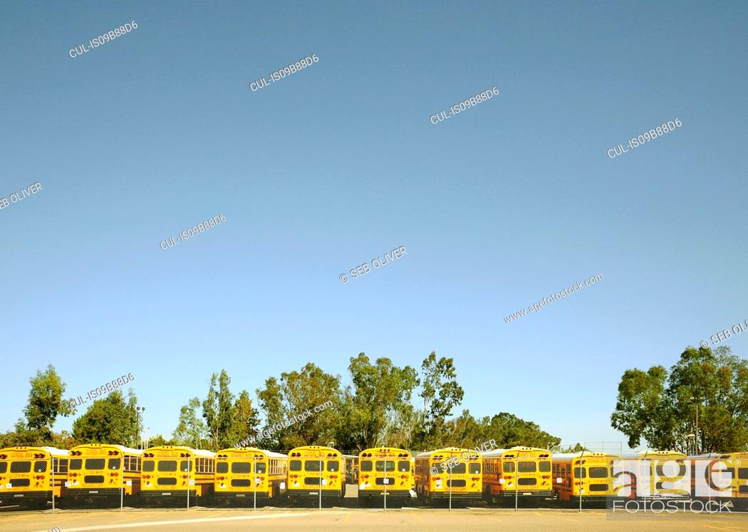 Stock Photo: Row of yellow school buses in parking lot.