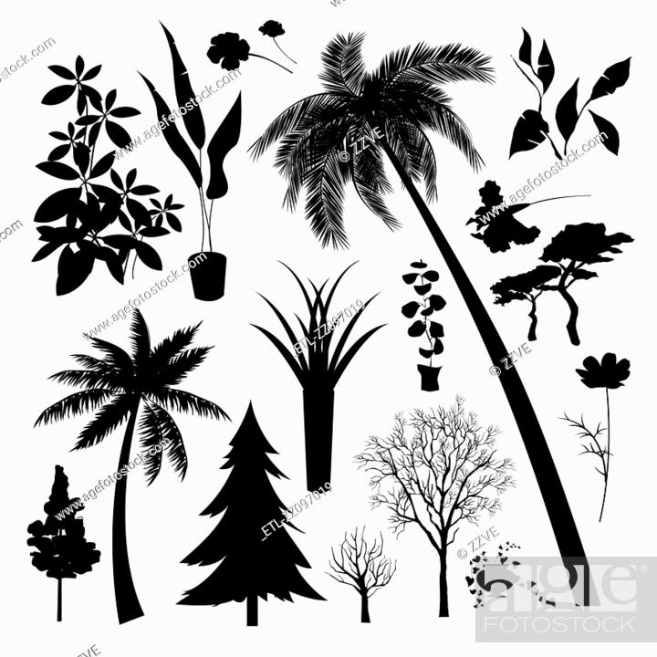 Stock Photo: Set of silhouette of Different type of trees and plant.