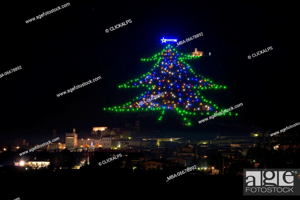 stock photo the biggest christmas tree of the world drawn with lights on the - Biggest Christmas Tree