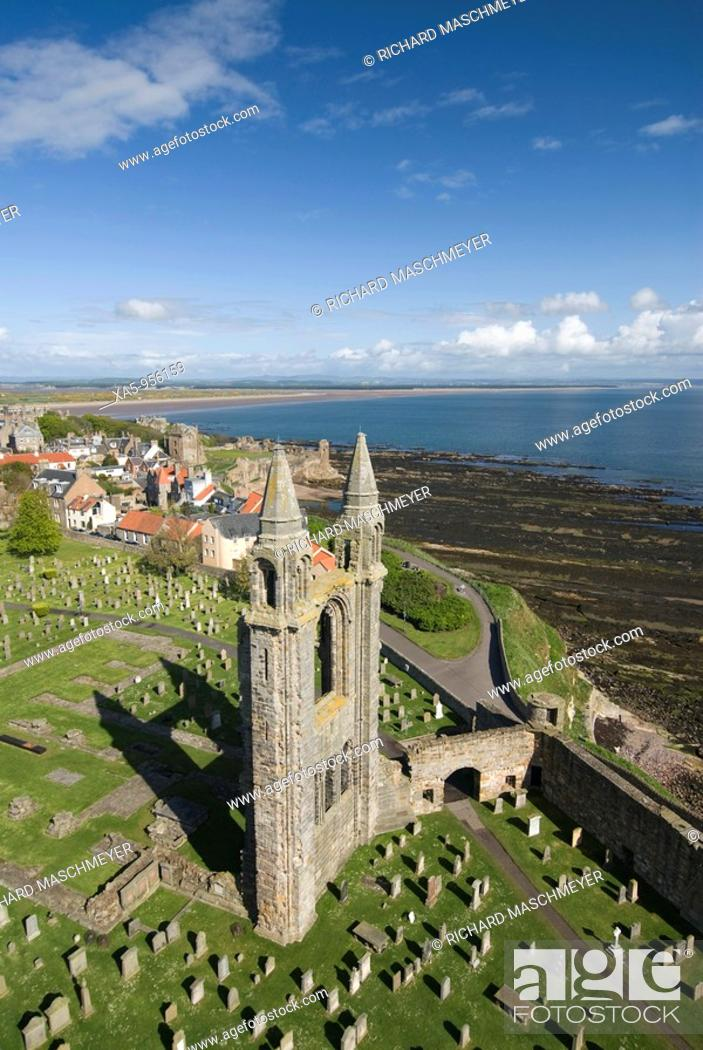 Stock Photo: St Andrews Cathedral, Fife, Scotland, UK.