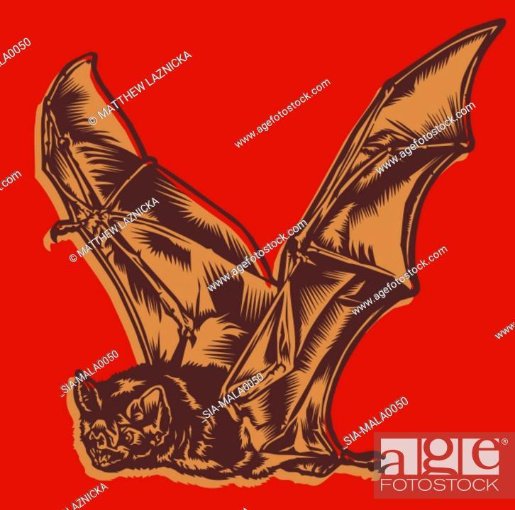 Imagen: Flying bat on red.