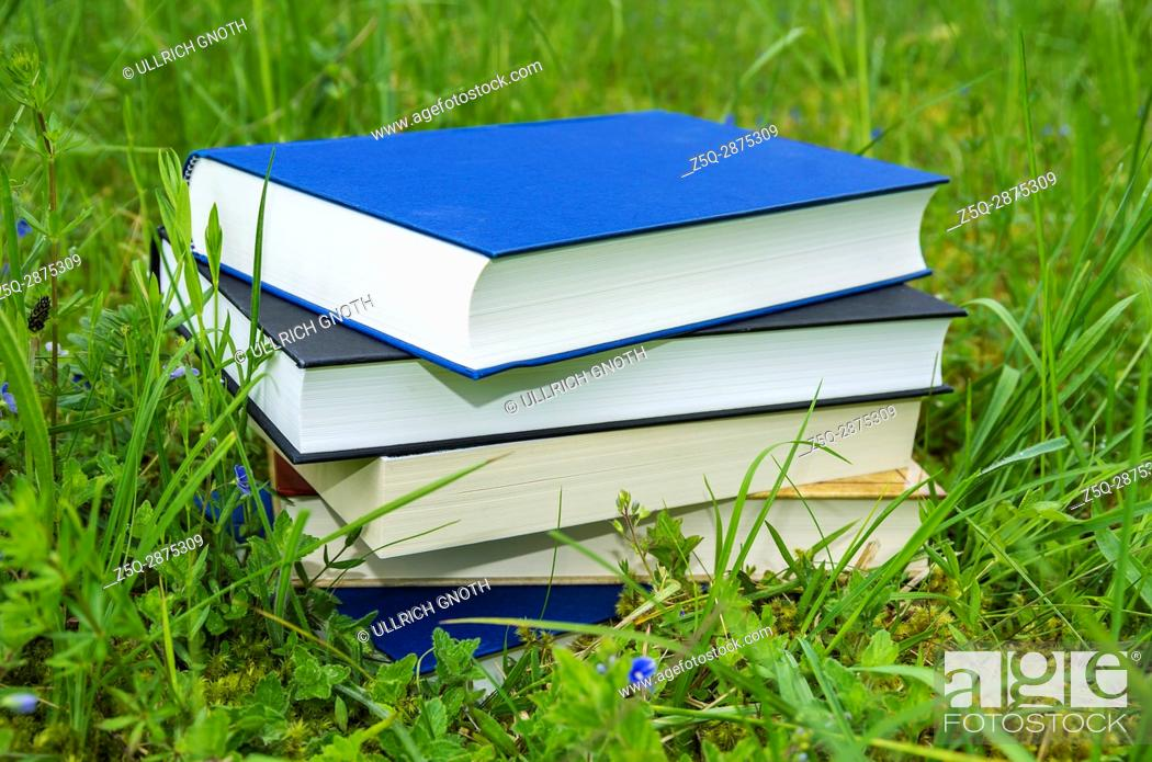Stock Photo: Pile of various books in the fresh green grass.