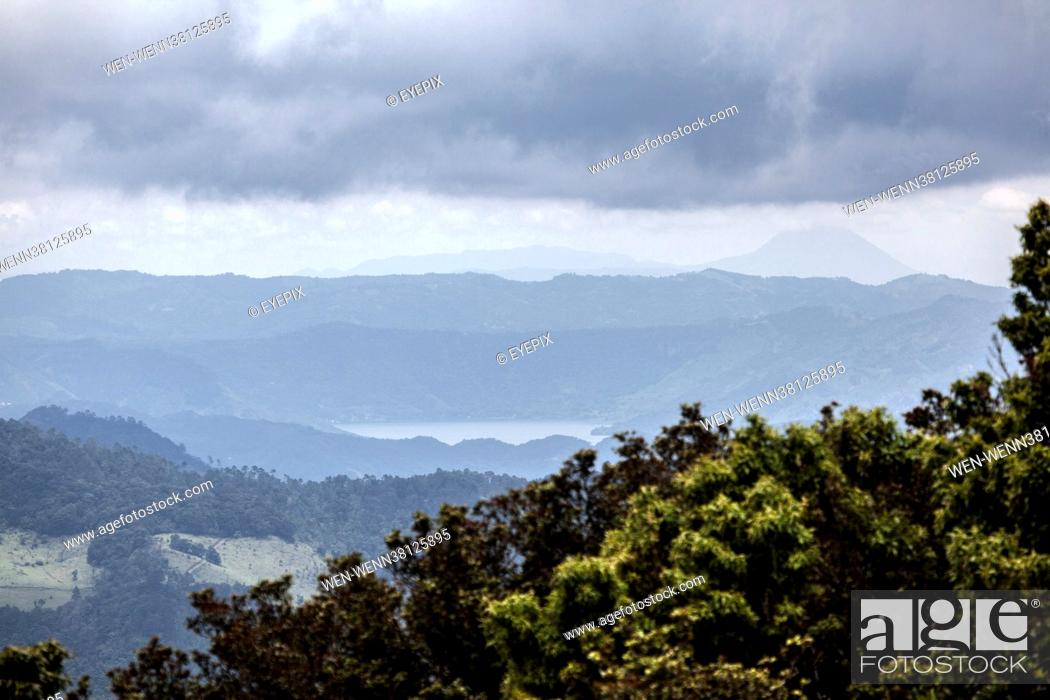 Stock Photo: General view of a Corn field through the mist located at San Jose Pinula forest on September 2 2021 in Guatemala City, Guatemala Where: Guatemala City.