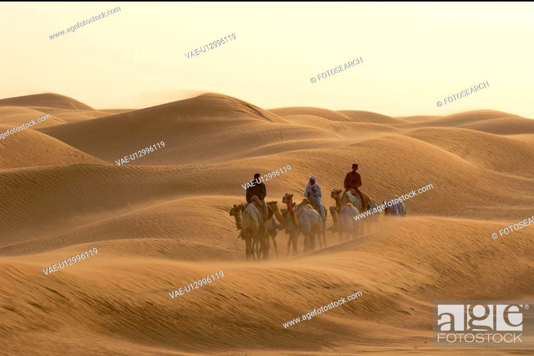 Stock Photo: dubai, desert, travel, camel, people, walking.