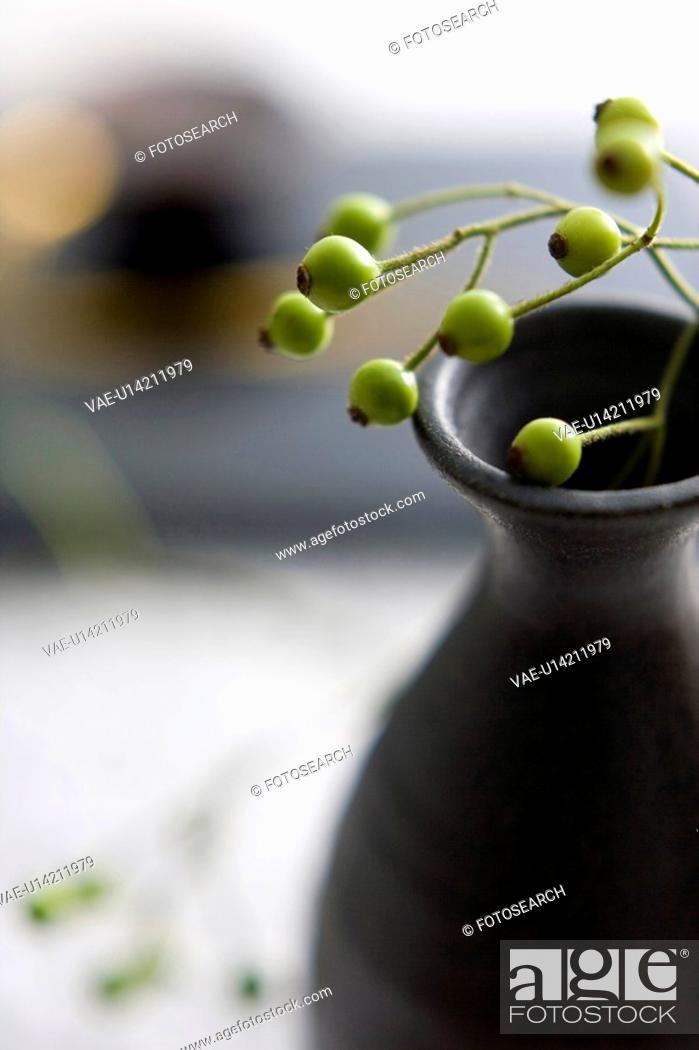 Stock Photo: Kaiseki.