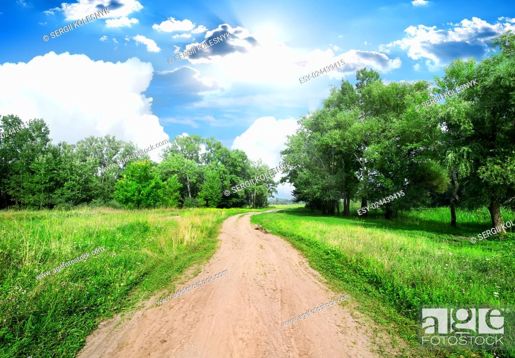 Stock Photo: Country road and green trees at sunny day.