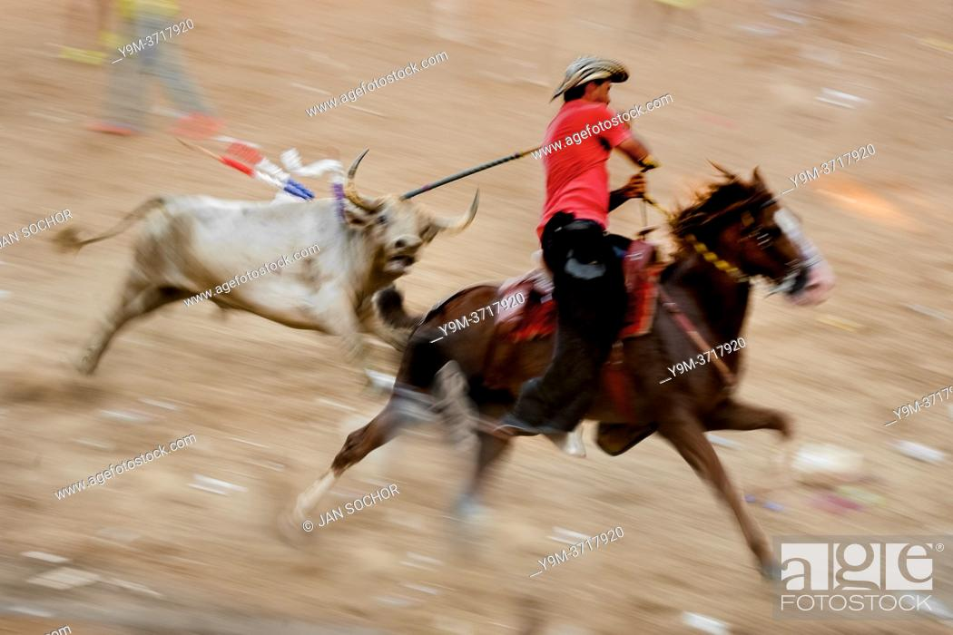 Stock Photo: A Colombian cowboy on a horse (garrochero) stabs a bull in the neck while being chased in the arena of Corralejas, a rural bullfighting festival held in.