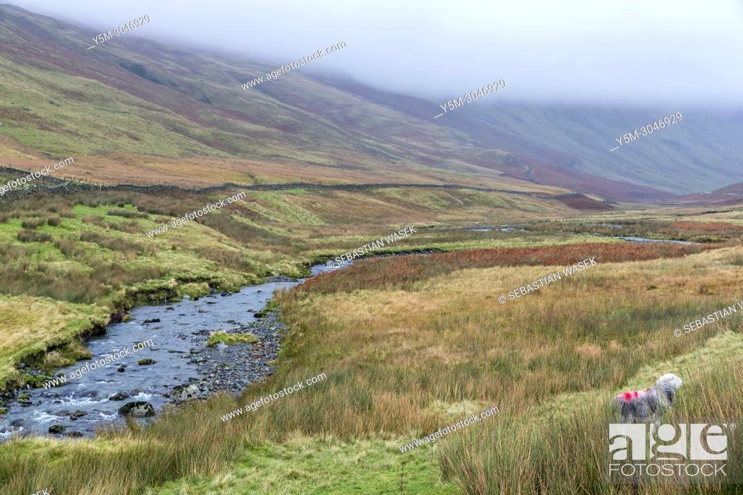 Stock Photo: Newlands Pass near Buttermere, Lake District National Park, Cumbria, England, UK, Europe.