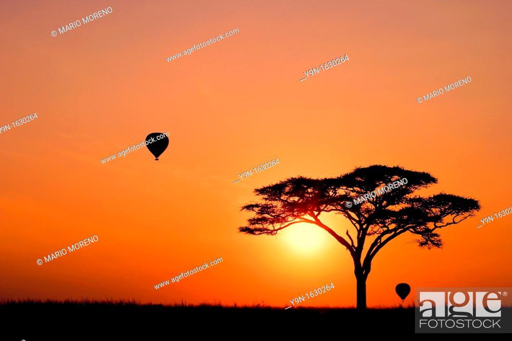 Stock Photo: Hot Air Balloons at Sunrise in the Serengeti National Park, Tanzania.