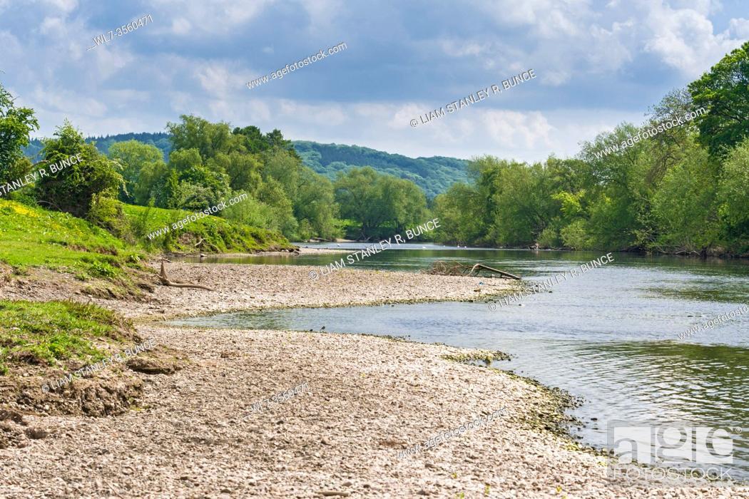 Stock Photo: The river Wye at Hampton Bishop Hereford herefordshire UK. May 2020.