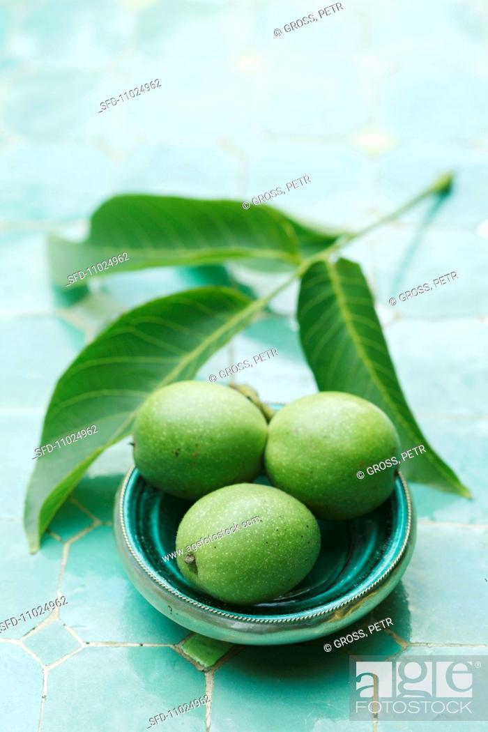 Stock Photo: Walnuts with twig.