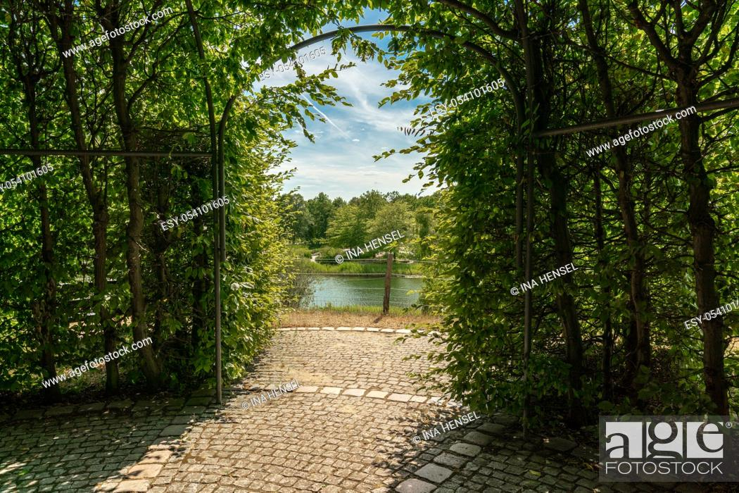 Stock Photo: green arbour of beech branches and leaves with view onto a scenic lake landscape.