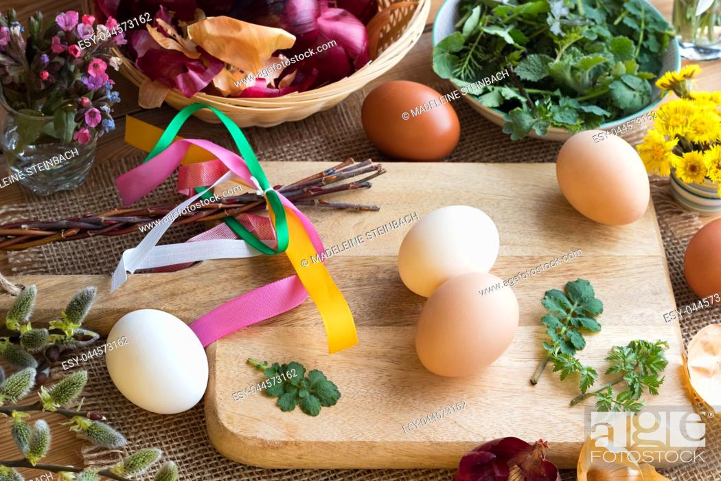 Stock Photo: Preparation of Easter eggs for dying with onion peels: eggs, onion peels, and fresh green leaves on a table, with willow catkins.