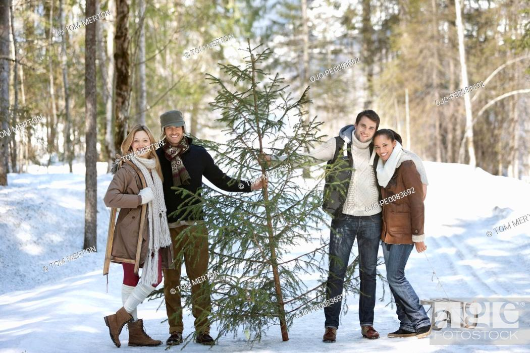 Stock Photo: Portrait of smiling couples with fresh cut Christmas tree and sled in snowy woods.