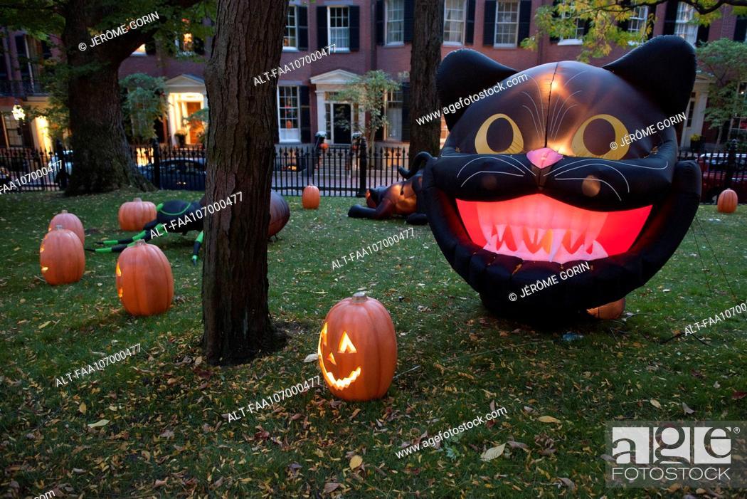 Stock Photo: Halloween decorations illuminated at twilight.