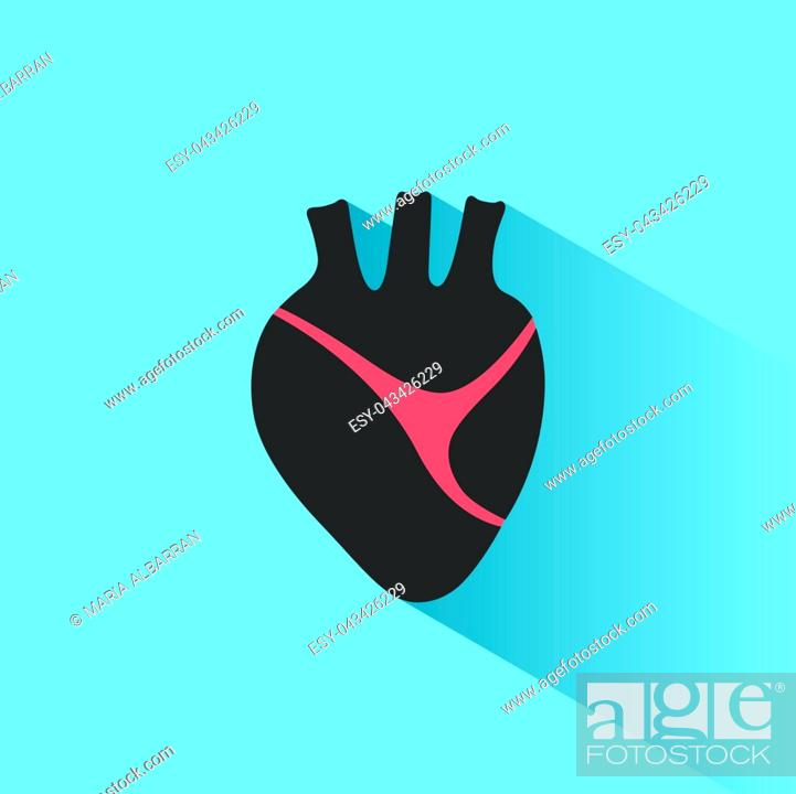 Vector: Human heart icon with shade on a blue background. Vector illustration.