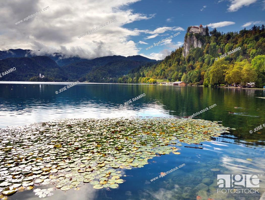 Stock Photo: Bled lake in Slovenia. Europe.